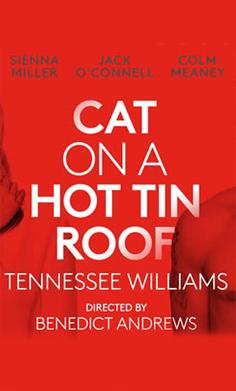 Кошка на раскалённой крыше